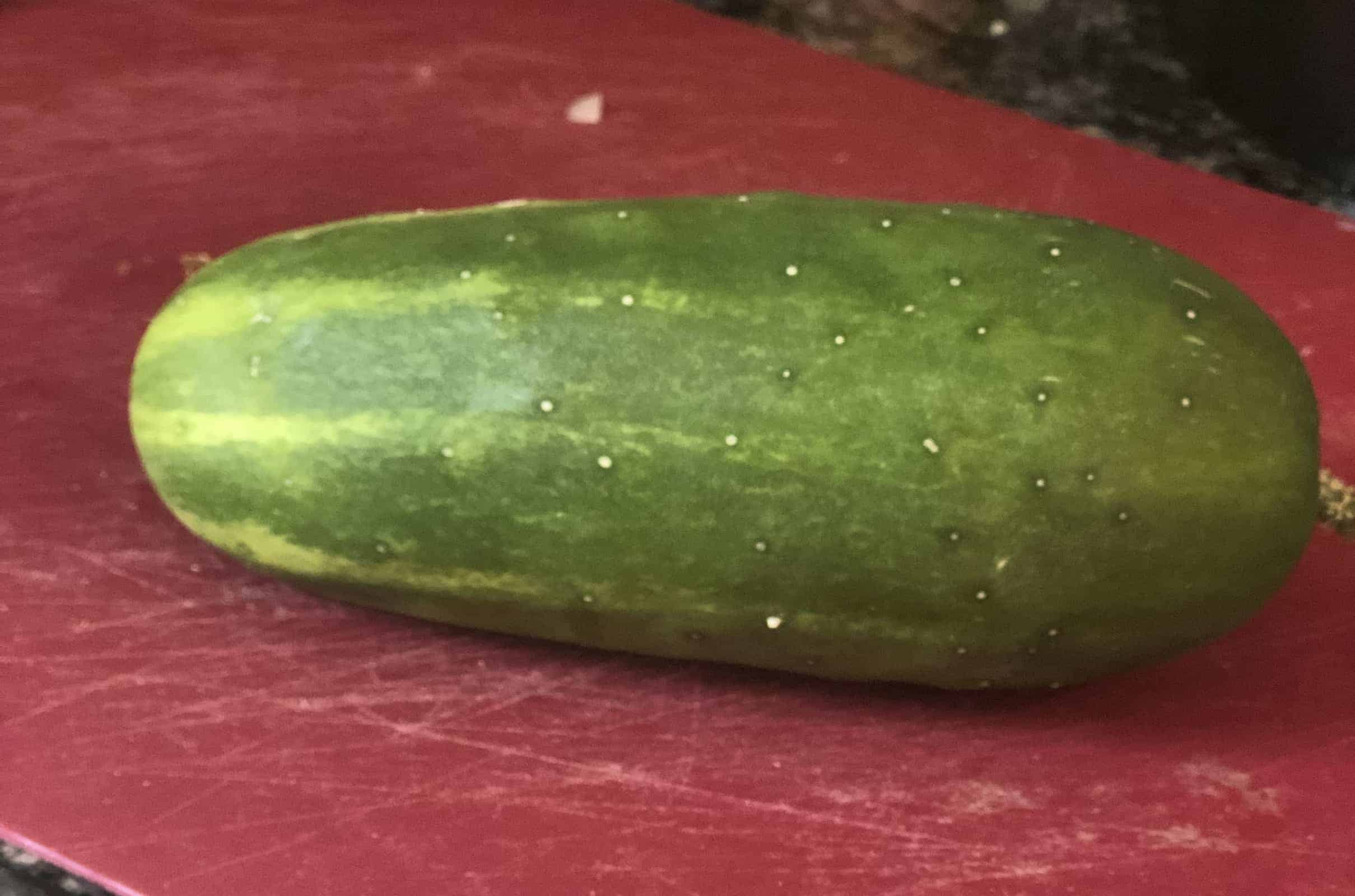 One whole cucumber on a maroon cutting board