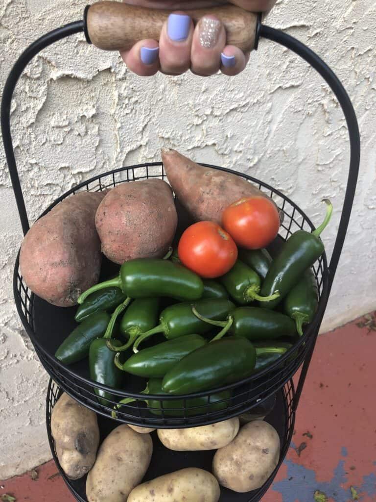 Garden Picked Jalapeños