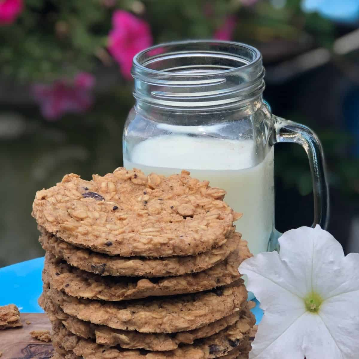 A stack of six oatmeal cookies with a glass of milk in a clear mason glass jar and a white petunia